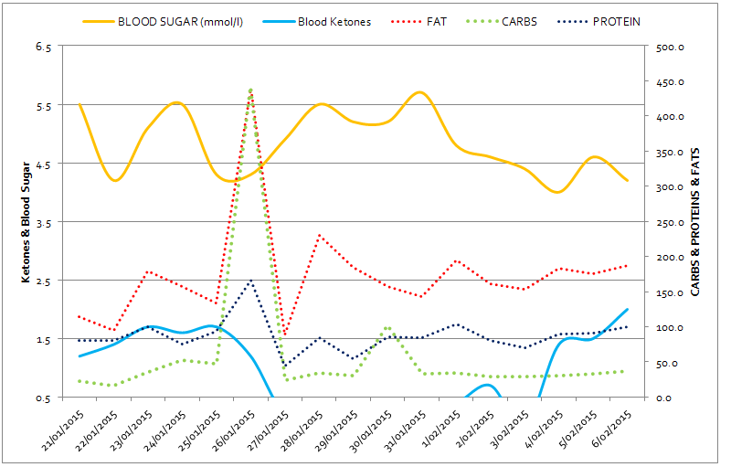 The Blue Line at the Bottom Shows Blood Ketones going under 0.5 and falling off the chart.