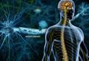 Ketogenic Diet in Treating Progressive Multiple Sclerosis