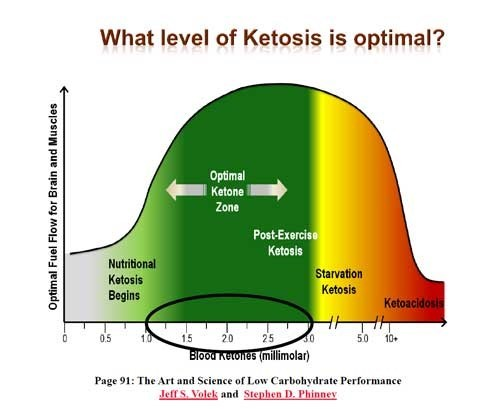 5 Simple Steps to Get into Ketosis - Keto Island