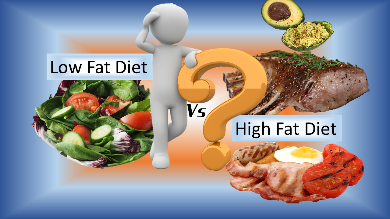 Nutrition Divided: Low-Fat vs. High-Fat Diet